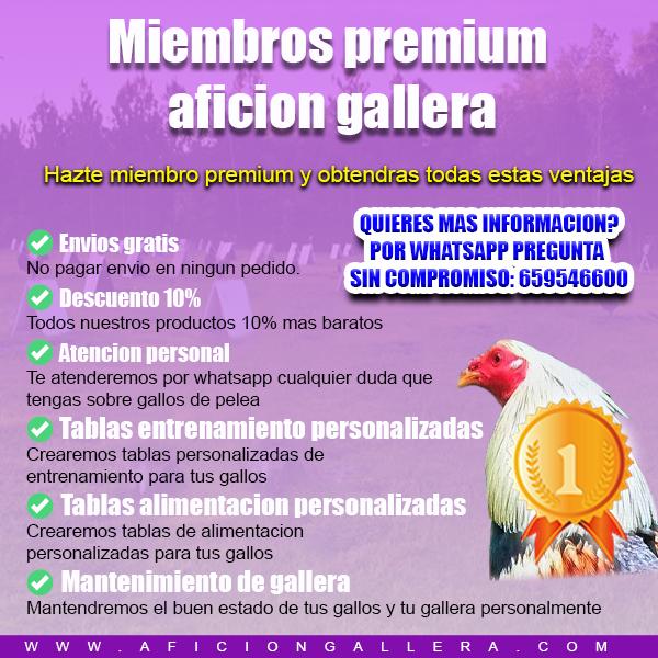 MIEMBROS PREMIUM AFICION GALLERA